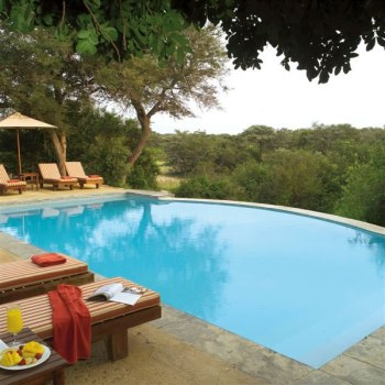 Thornybush Game Lodge pool