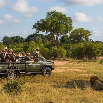Jackalberry Lodge Long Game Drive