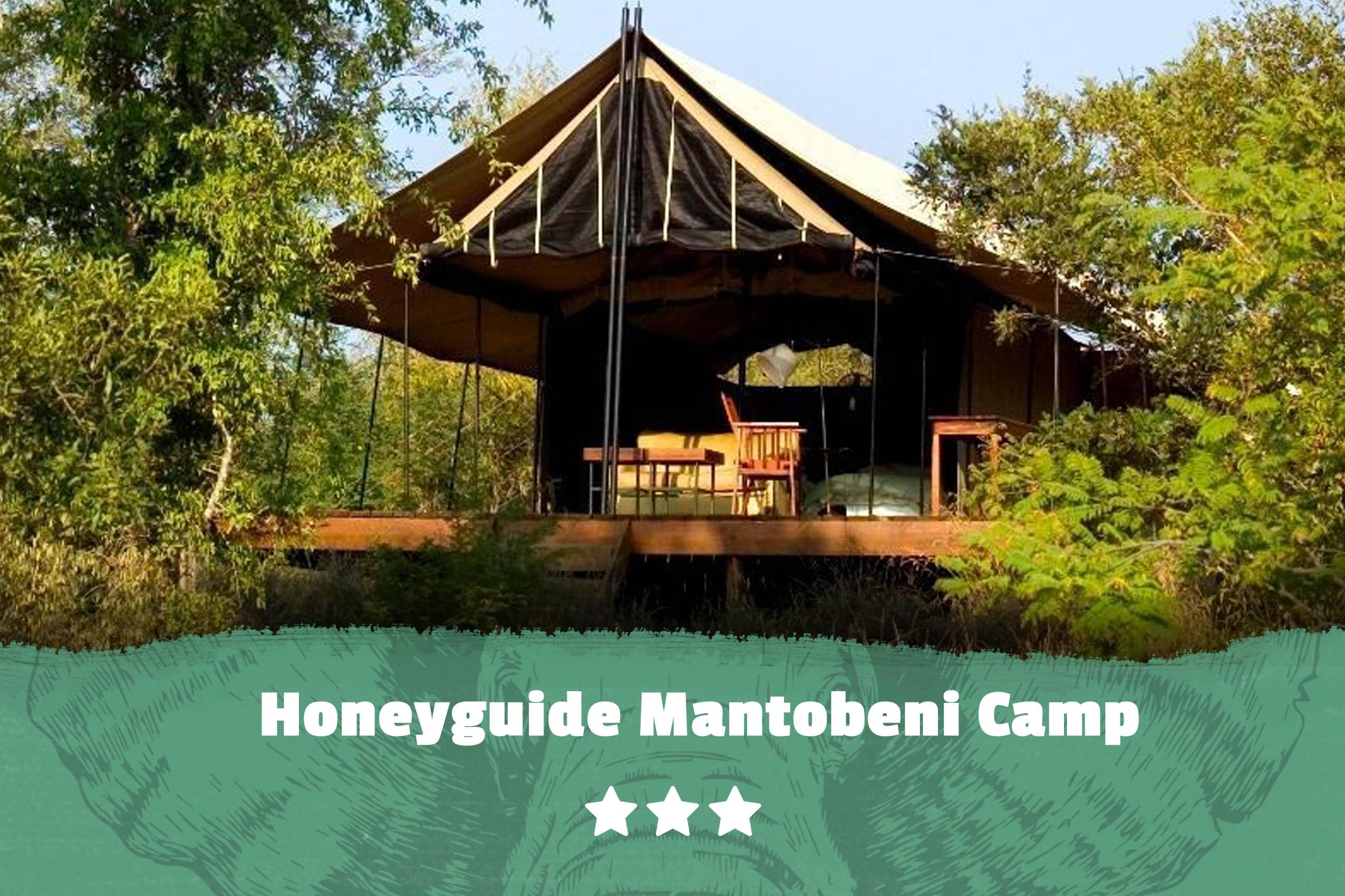 Kruger featured image Honeyguide Mantobeni Camp