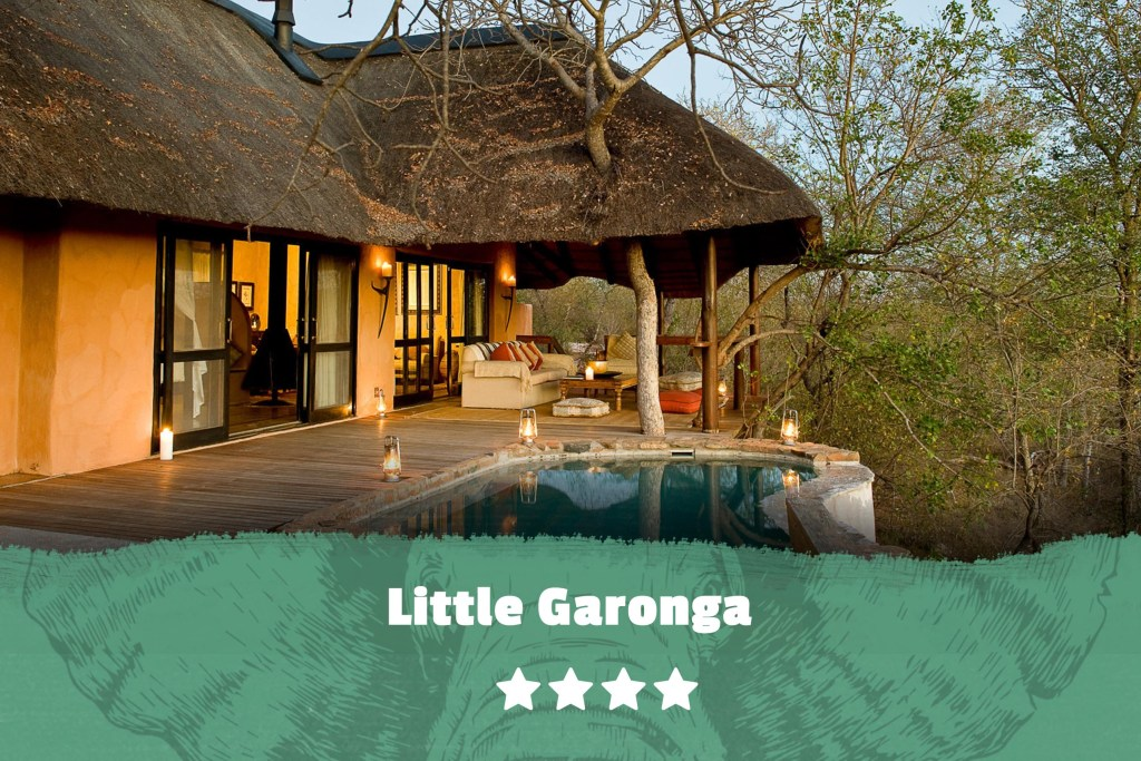 Kruger featured image Little Garonga