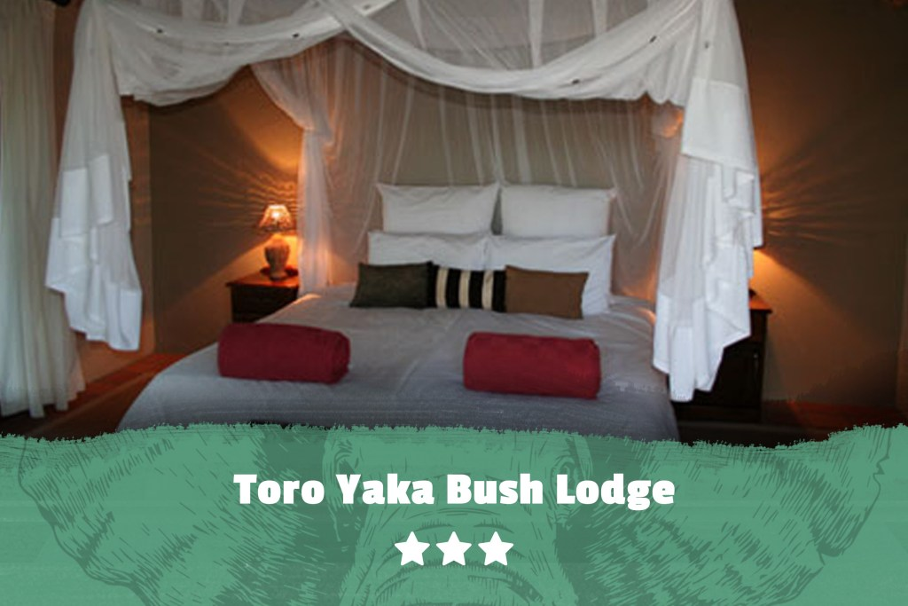 Kruger featured image Toro Yaka Bush Lodge