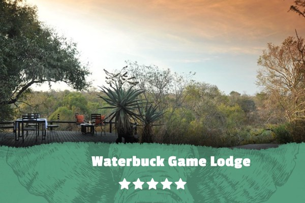 Kruger featured image Waterbuck Game Lodge