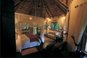 Serenity Forest Eco Reserve Forest Suite Bedroom