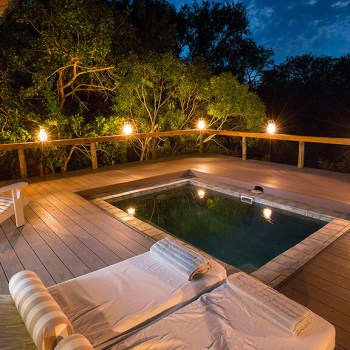 Thornybush Game Lodge Suite Plunge Pool