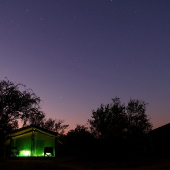 Motswari Private Game Reserve Night Time View of the Camping Ground from an All Night Safari