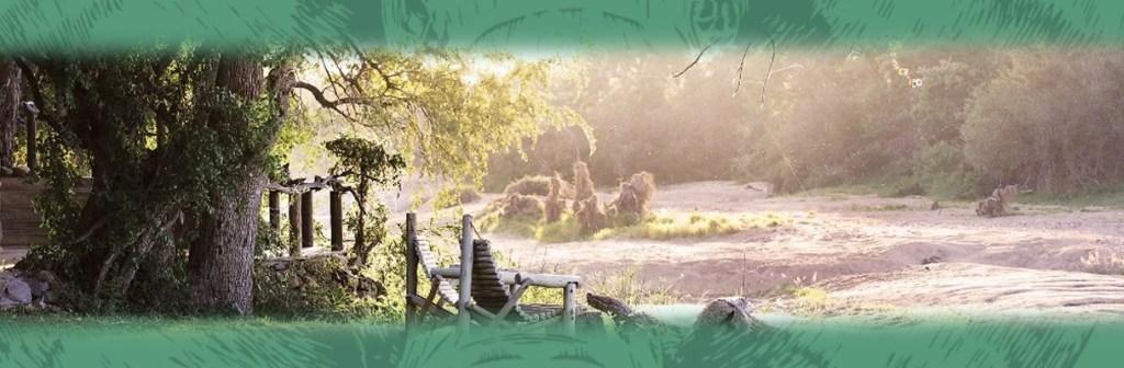Motswari Private Game Reserve Perfect Location View