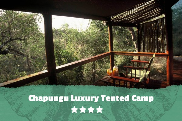 Kruger featured image Chapungu Luxury Tented Camp
