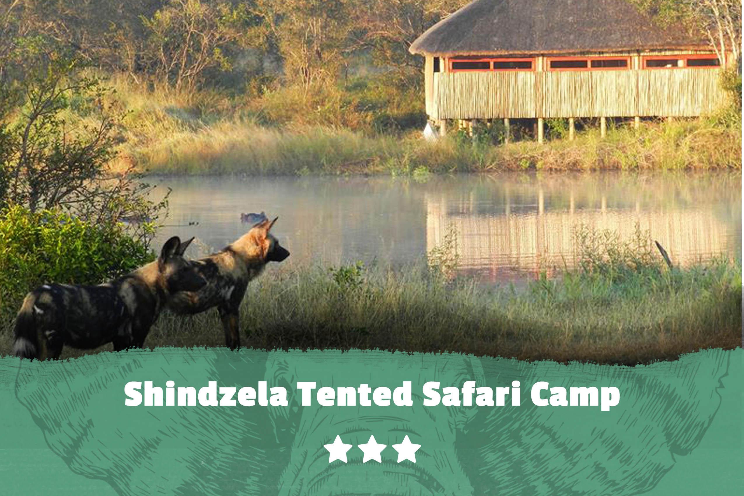 Kruger featured image Shindzela Tented Safari Camp