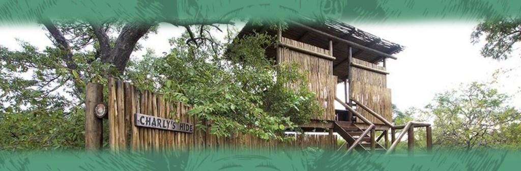 Naledi Enkoveni Camp Activities and Views