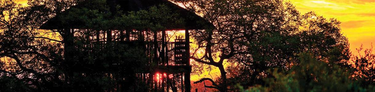ezulwini-game-lodge-image-4