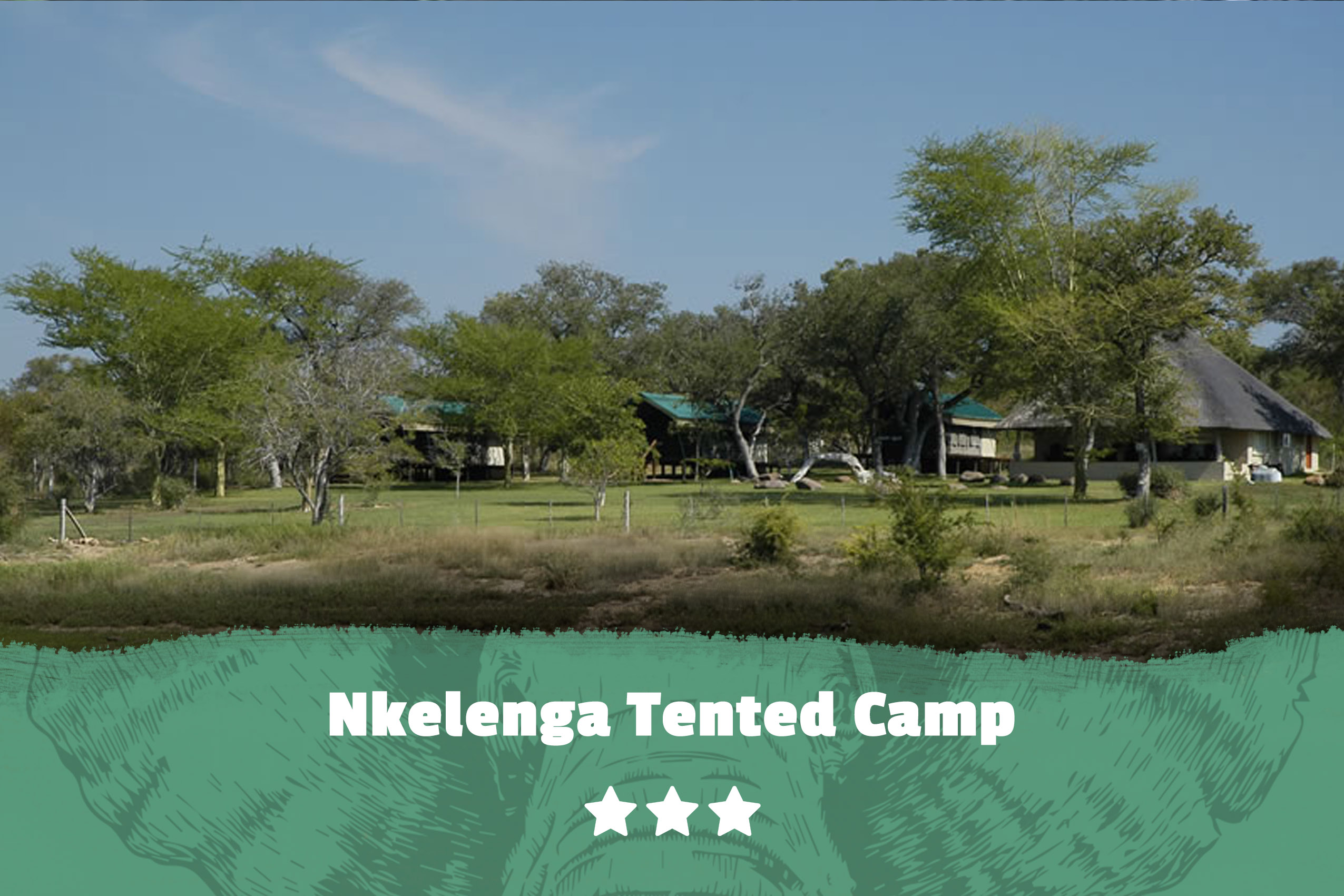 Kruger featured image Nkelenga Tented Camp