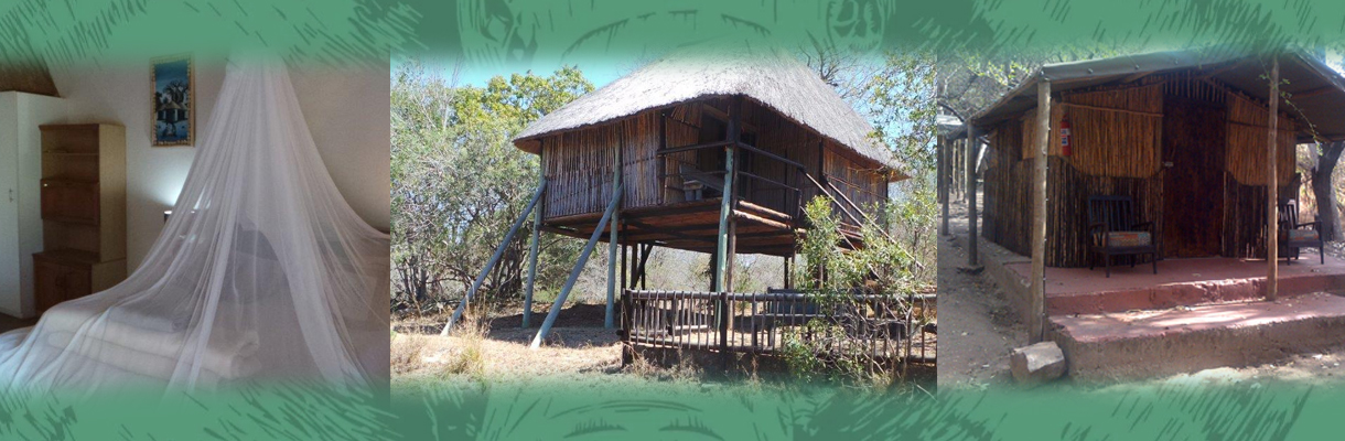 Marc's Treehouse Lodge Overviews
