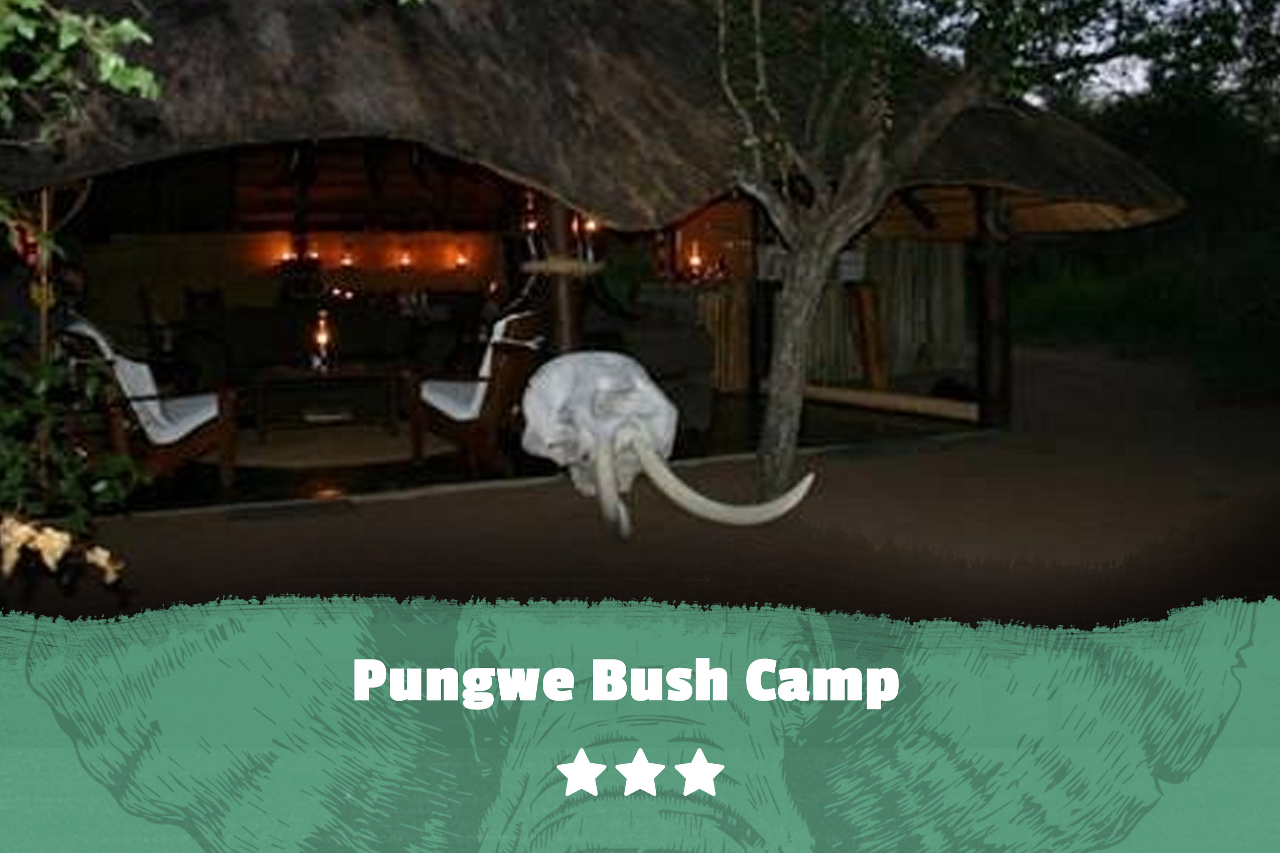 Kruger featured image Pungwe Bush Camp