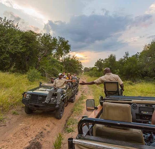Chapungu Luxury Tented Camp Game Drives