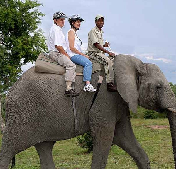 Manyatta Rock Lodge Elephant Rides