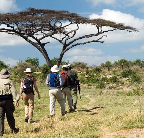 Monwana Game Lodge Walking Safari