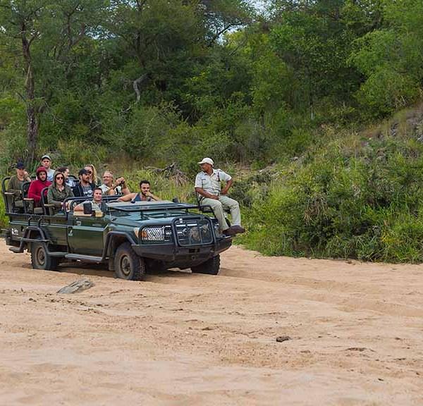 Serondella Game Lodge Activities Safari Drive