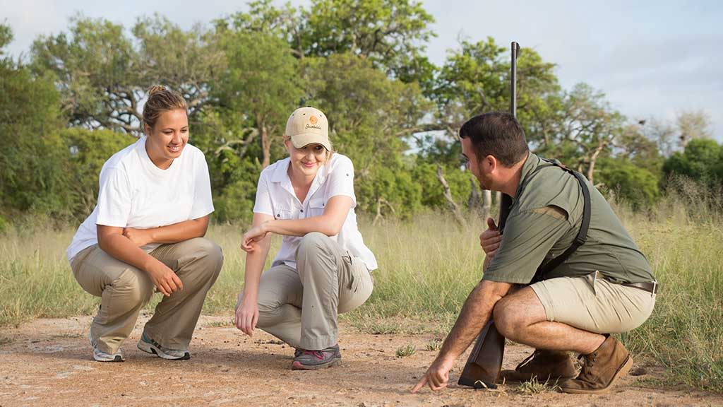 Shumbalala Game Lodge Walking Safari