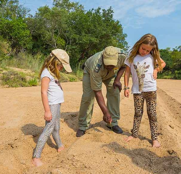 Thornybush Game Lodge Children Activities Young Trackers