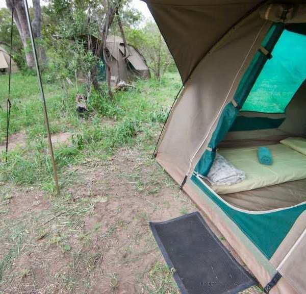 Bateleur Mobile Camp Dome Tent Close Up