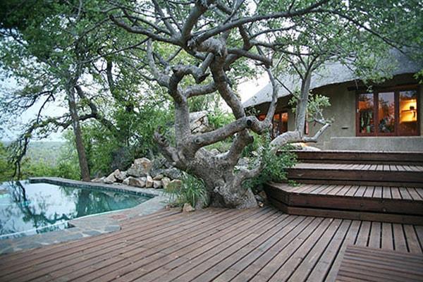 Kgoro Lodge Pool Deck