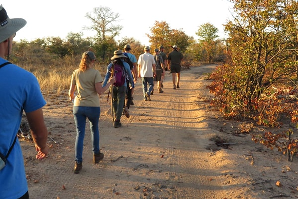 Senalala Luxury Safari Camp Guided Walk