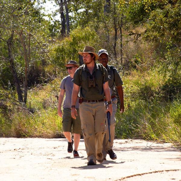 Shindzela Tented Safari Camp Guided Walk