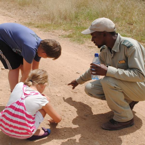 Waterside Lodge Kid Safari