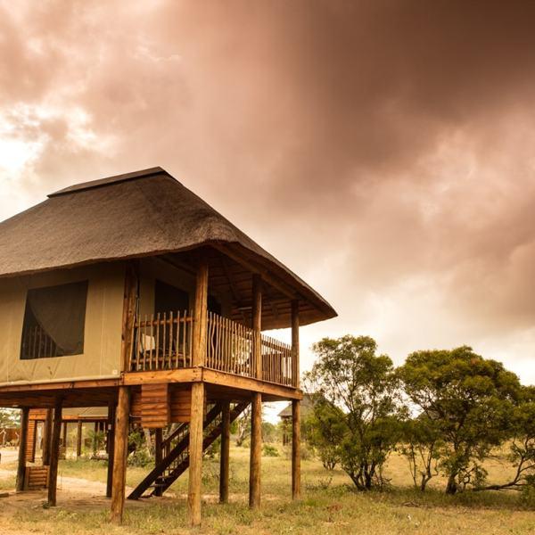 nThambo Tree Camp Treehouse Chalet