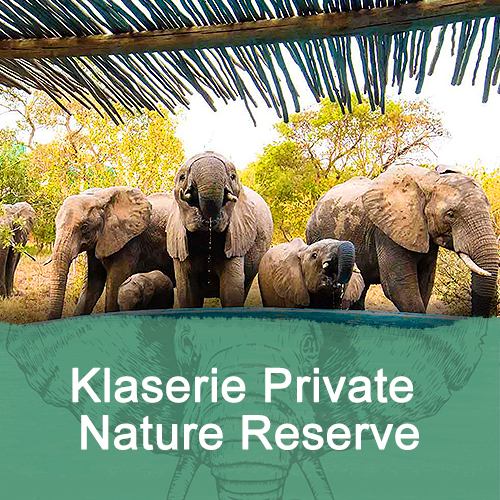Klaserie Private Nature Reserve Feature Image