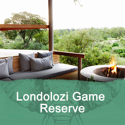 Londolozi Game Reserve Feature Image