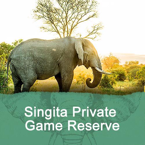 Singita Private Game Reserve Feature Image New