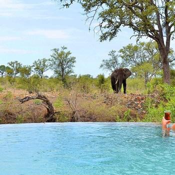 Hoyo Hoyo Safari Lodge Pool With A View