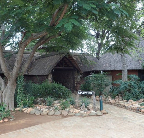 Mohlabetsi Safari Lodge Reception