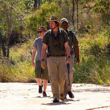Shindzela Tented Safari Camp Guided Walk