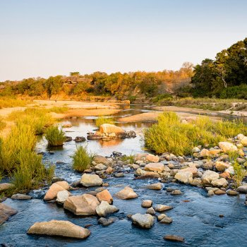 Singita Ebony Lodge Stream