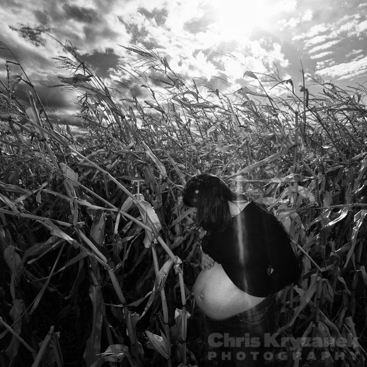 maternity session, photo, pregnant, belly, sun burst, corn field, flare
