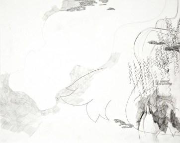 """""""Ich wähne mich weiter"""", 50 x 40 cm, Bleistift, Karton, 2016"""