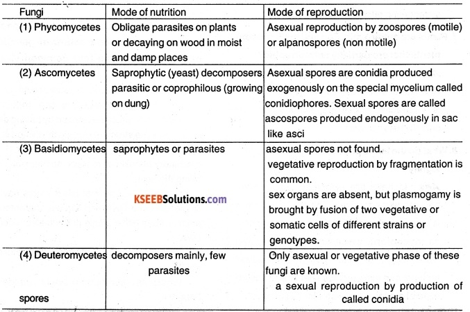 1st PUC Biology Question Bank Chapter 2 Biological Classification 4