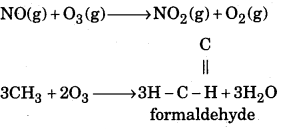1st PUC Chemistry Question Bank Chapter 14 Environmental Chemistry - 1