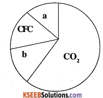 2nd PUC Biology Question Bank Chapter 16 Environmental Issues 6