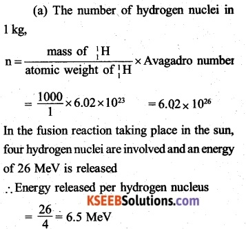 2nd PUC Physics Question Bank Chapter 13 Nuclei 51