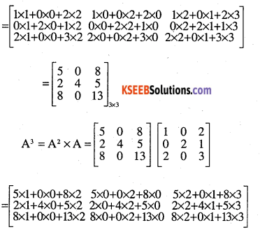 2nd PUC Maths Question Bank Chapter 3 Matrices Ex 3.2 31