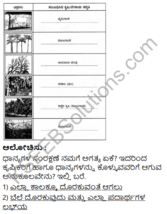 KSEEB Solutions for Class 5 EVS Chapter 8 Agriculture in Kannada 8