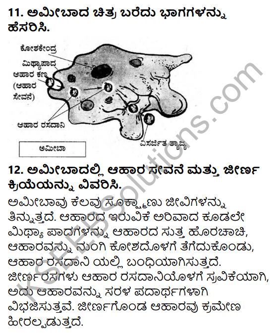 KSEEB Solutions for Class 7 Science Chapter 2 Pranigalalli Poshane 13