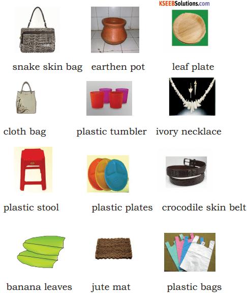 Avoid Plastics Summary In English 1