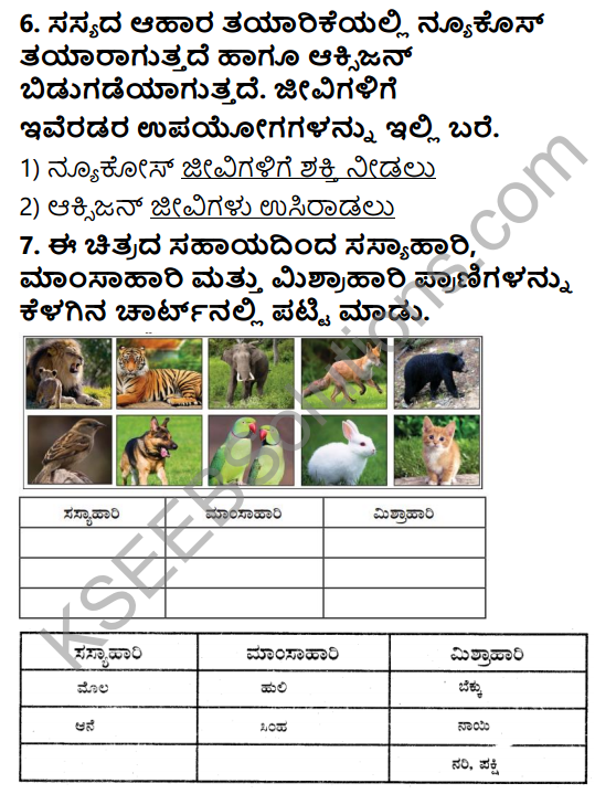 KSEEB Solutions for Class 5 EVS Chapter 1 Living World in Kannada 5