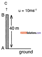1st PUC Physics Question Bank Chapter 3 Motion in a Straight Line img 44