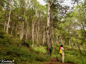 Mt. Kupapey is part of the watershed in Maligcong.