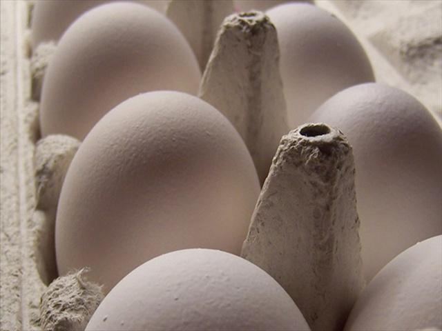 eggs_134373